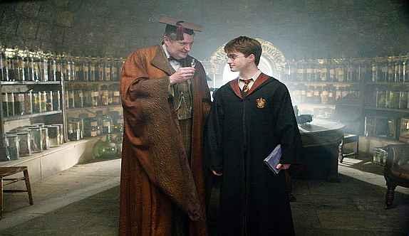 Harry Potter y profesor de Hogwarts-José Manuel Bautista
