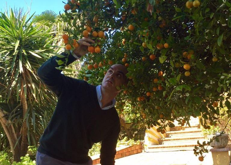 nano mandarino amargo José Manuel Bautista sorprendido